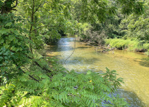 River at the hiking trail at Gunpowder Falls State Park in Baltimore County, Maryland, in July 2019.